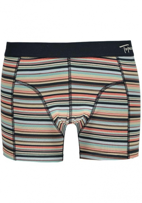 Topeco 2-pack regular boxer mönstrad, bomullsstretch, navy